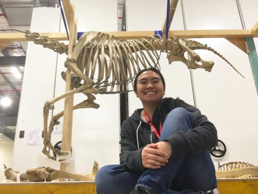 Kyra- Work Experience at the Australian Museum
