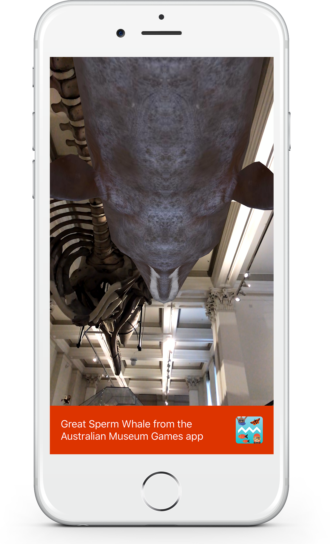 Augmented reality Great Sperm Whale in the Whale Trail game