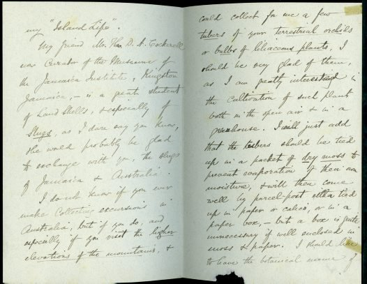 Alfred Russel Wallace writes to Charles Hedley in July 1892