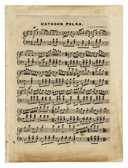 Music composed in 1853 by George Strong in honour of Australian Museum curator WS Wall.