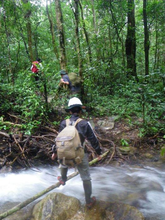 Amphibian survey, central Vietnam.