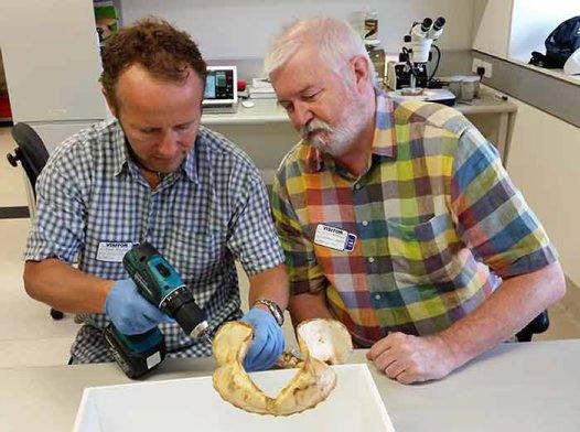 Drs Einar Neilsen and Julian Pepperell
