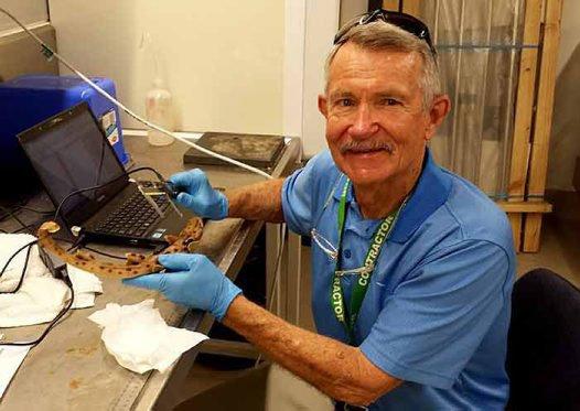 Dr Gerry Allen