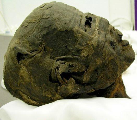 Ancient Egyptian Mummy E73942