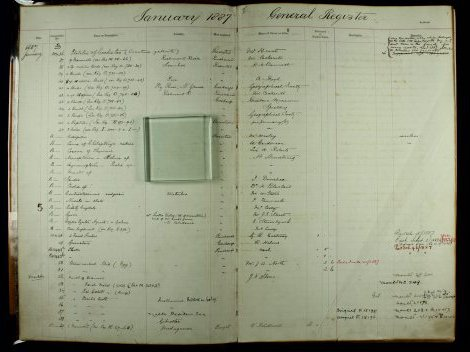 Image of the Australian Museum General Register