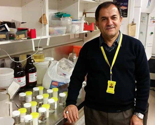 Dr Javad Ghasemzadeh