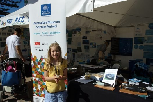 The Australian Museum visits Manly