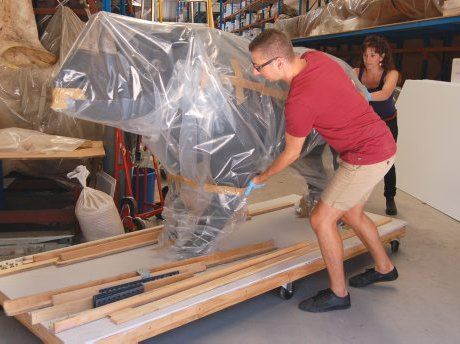 Kate Jones and Sheldon Teare are moving a black rhinoceros. This female rhino weighs approximately 350kgs and is being moved out of the way so other specimens can be removed via the rear rolling door out to a new storage facility.