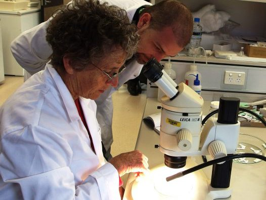 MicroVols in the Lab