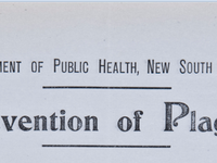 Prevention of Plague. Instructions to Householders heading