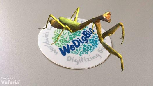 WeDigBio sticker Photographer:  © Australian Museum