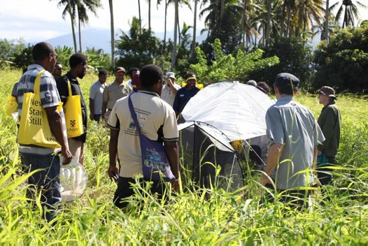 Malaise trap demonstration in Papua New Guinea