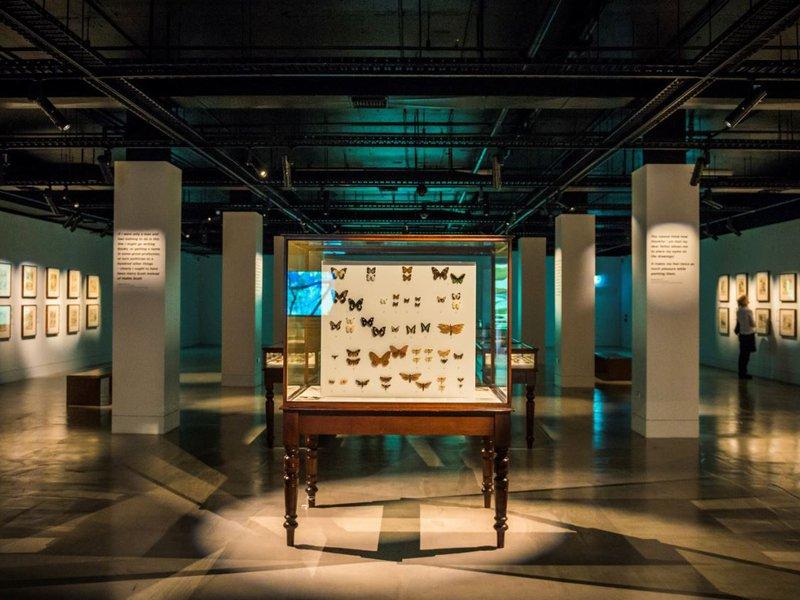 Scott Sisters Exhibition Documentation 2017